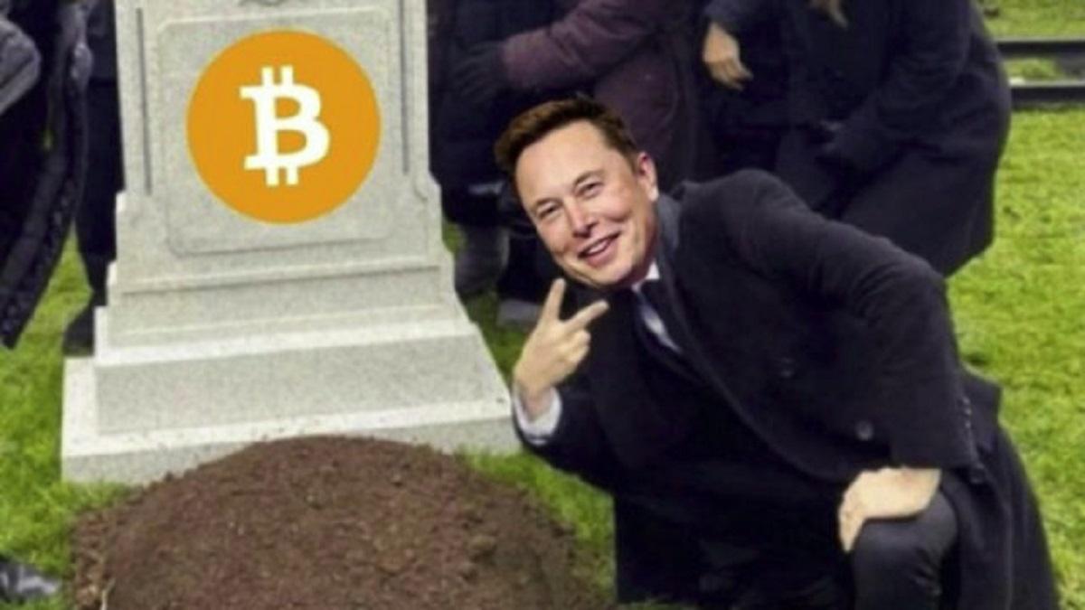Bitcoin News Elon Musk / Elon Musk admits that bitcoin and ...